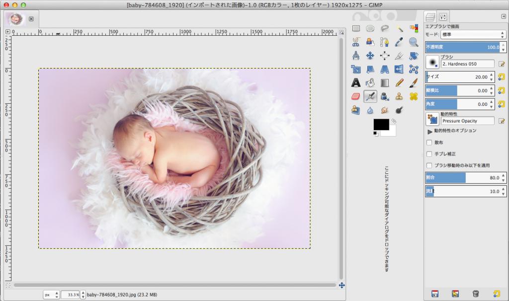 GIMPで写真を開いたところ
